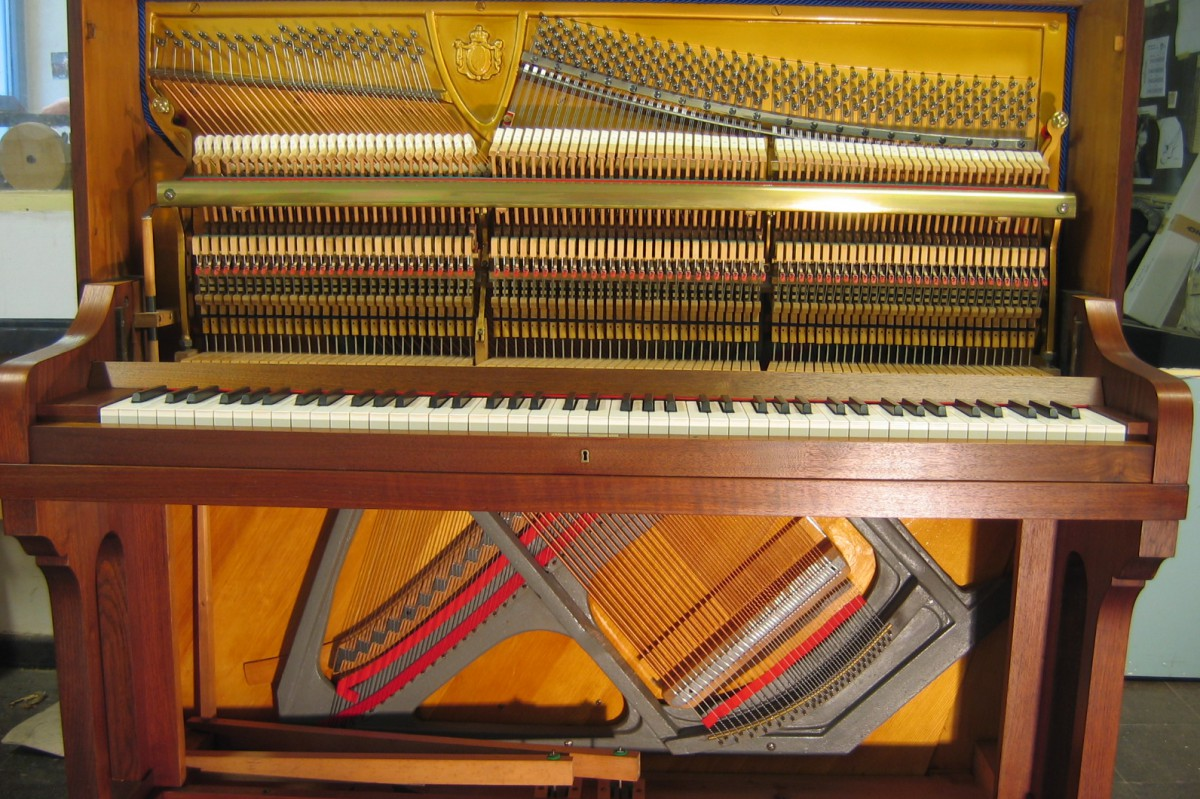 Alexander Herrmann Klavier